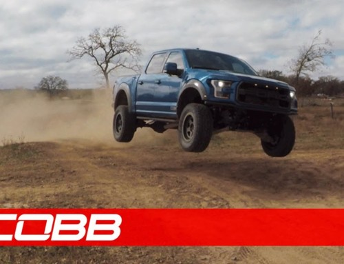 2017-2019 Cobb Raptor Products