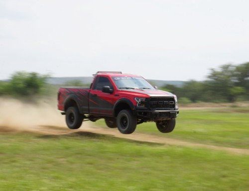 Texas Raptor Run