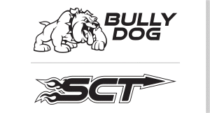 SCT/Bully Dog